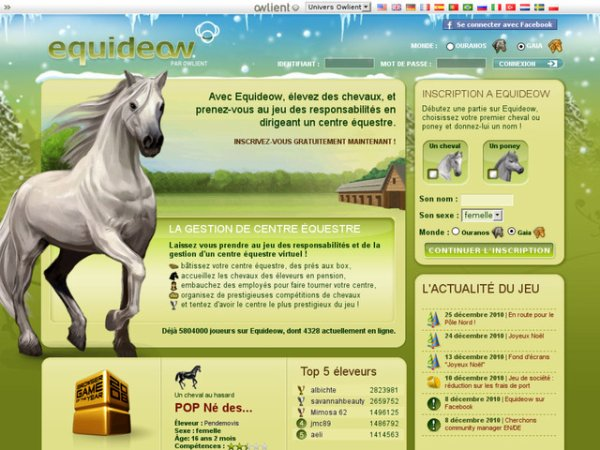 Bienvenue sur equideow--solution